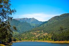 Colour of Nature   Munnar (prashanthkumar2) Tags: sunlight must traditions southindia kerala munnar nikond5100 landscape nature colours