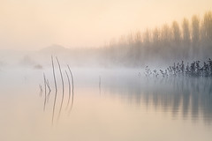 |||| (Pedro Díaz Molins) Tags: sunrise amanecer pantano embalse lago lake light luz niebla fog pedro diaz molins nikon d800 minimalismo minimalista minimal minimalism minimalist atmosphere mood
