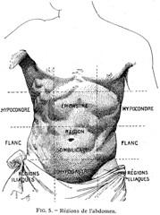 Anglų lietuvių žodynas. Ką reiškia žodis abdomen lietuviškai?