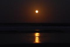 P1610827 (Kelson Souza) Tags: luacheia lua superlua moon lual noite anoitecer