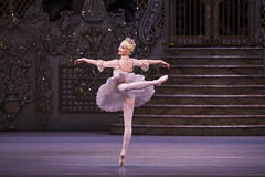 Sugar and spice and all things nice: delving into <em>The Nutcracker</em>'s sweet history