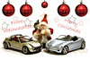 Merry Christmas (Pinky0173 (thrun-fotografie.de)) Tags: merrychristmas peaceful violance star mercedes smart canon thrunfotografie berlin germany