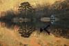 Rydal Water (Mike Cushing) Tags: lake reflection calmness water rydal peace winter