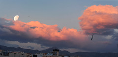 Moonset today (Nikos Roditakis) Tags: moonset moon clouds landscapes heraklion night scenes nikos roditakis nikon d5200 af s nikkor 55200mm f456 ed vr