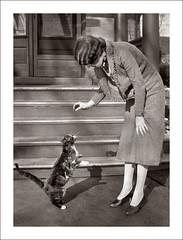 Fashion 0330-33 (Steve Given) Tags: socialhistory familyhistory fashion lady woman pet cat