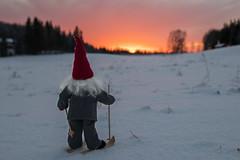 On the way back to Finland (Explore 2017-01-14) (nillamaria) Tags: fotosondag fs170115 tomte solnedgång santaclaus fatherchristmas sunset skidor skiing santa