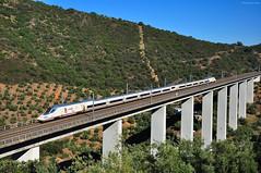 AVE S-102. Viaducto sobre el Arroyo de Pedro Gil (rapidoelectro) Tags: ave viaducto puente córdoba adamuz sierramorena cordobesa viaduct bridge renfe 75 aniversario altavelocidad highspeedtrain