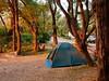 Parry Campsite im Abendlicht (bayernphoto) Tags: australia western parry beach australien westaustralien camping rv 4wd zelt tent wohnwagen camper abendlicht strand wohnmobil campervan recreation warm licht
