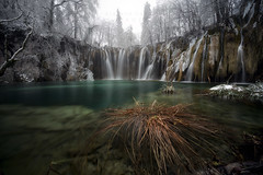 Searching for a star (Stephen Hunt61) Tags: falls water ice frost rpcks nature natural nationalpark trees streams reflectivesurface pond winter parconazionale natura cscate acqua ghiaccio stefanocaccia