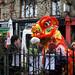 2009-1371-chinese-lion-daisy-zoll