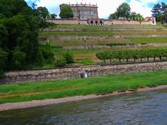 Lingerschloss an der Elbe (Sophia-Fatima) Tags: castle dresden sachsen schloss elbe lingerschloss