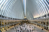 The Oculus (JMS2) Tags: wtc theoculus shopping commuting path portal station nyc