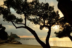 Lerici and his castle (moniq84) Tags: liguria sunrise sunrises sunset sunsets sun clouds sole nuvole tramonto controluce backlight contre jour lerici castle riviera levante la spezia tigullio paesaggio landscapes panorama sea tree landscape nikon light boats