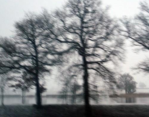 3 - Noël arrive, première neige sur la Bourgogne du Sud