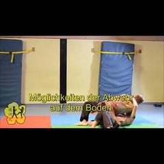 Kung-Fu-Demo am Schnuppertag November 2015 (krys.becker) Tags: daokungfu vorführung selbstverteidigung kampfkunst wingchun kampfsport kungfu sport herbst2015 kinder jugend petershausen untermenzing jungen mädchen kindergruppe jugendgruppe kungfudemo novmeber2015