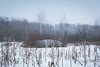 Winter Stillness (KAPU PHOTOGRAPHY) Tags: abandoned eos mk3 afterearth winter frost russia