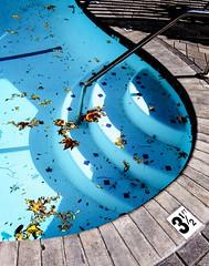 Eagle Rock, December 2016 (jar [o]) Tags: losangeles bestwestern eaglerock pool swimmingpool winter