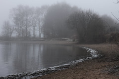 Misty Morning (daniel.gaffey) Tags: outdoors cold sand shore water lake british winter countryside foggy mist chasewater 50mm 18 nifty fifty frosty