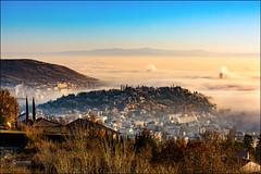 Parc de Montjuzet à Clermont-Ferrand (cleostan) Tags: parc de montjuzet clermontferrand fog brouillard auvergne puydedôme france brume arbres tree sunrise lever soleil nuages cloud fumée