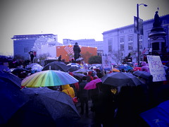 Women's March in San Francisco (fabola) Tags: bayareawomensmarch civilrights cityhall change community democrats justice kindness liberty love march politics protest pussypower rally rights sanfrancisco sisters socialchange trump women womensmarch sistermarch