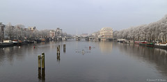 Amstel (jpmm) Tags: 2017 amsterdam boten woonboten houseboats roeier skif dukdalf mist zwanen
