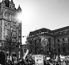 2017.02.04 No Muslim Ban 2, Washington, DC USA 00535