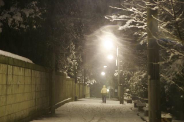 薄暗い雪道