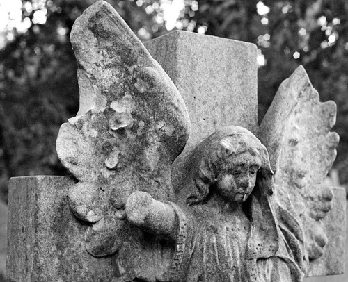 Angel from Highgate cemetery -- angel statue graveyard highgatecemetery cemetery highgate