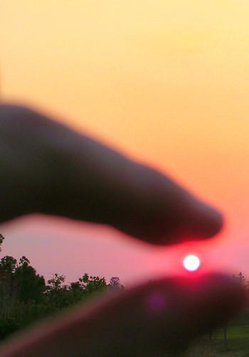 squash the sun
