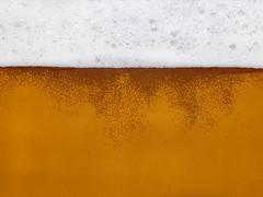 Cheers! (or 'skaal' as we say in Norway) (Rune T) Tags: orange white macro beer yellow topv111 wow salute bubbles cheers santé lager skaal