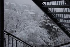 winter stairs (Dreamer7112) Tags: snow 20d schweiz switzerland europe suisse canon20d zurich canoneos20d snowing zrich svizzera winterwonderland eos20d zurigo limmatwest latemarchsnow