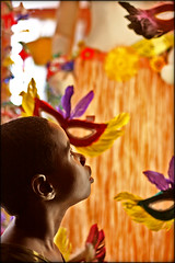 Carnival fascination - I