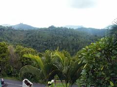 Bali  landscape (Franc Le Blanc .) Tags: travel bali green indonesia landscape asia ricefields sawah francleblanc