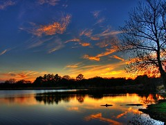 Lucy in the Sky with Diamonds (Java Cafe) Tags: blue sunset sky orange lake reflection tree water silhouette clouds landscape gold interestingness twilight bravo texas top20sunrisesunset quality interestingness1 topf300 1000v100f topv9999 topf150 topf100 hdr topf250 topf200 lakelewisville f350 topf400 topf450 topf500 topf350 f450 top20favview happyfew f500 magicdonkey top20reflections i500 1500v60f outstandingshots specland specnature explore22mar06 11111v111f 3000v120f f400 exploretop20 6000v240f abigfave 22222v222f naturetrophy colourartaward artlegacy cedruseternum