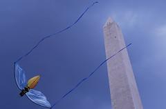 the new kit (kimprobable) Tags: kite monument mall washingtondc dc lenstagged dcist d200 mytraitorousheart nikon1870f3545