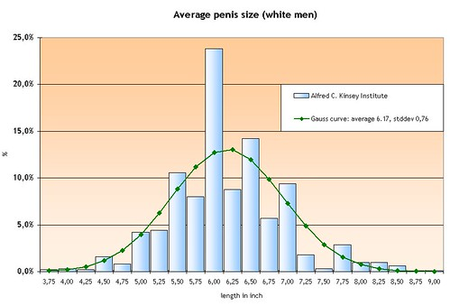 How large is the average penis the