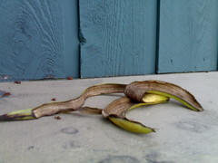 Banana Peel - Roland in Vancouver 1103.jpg