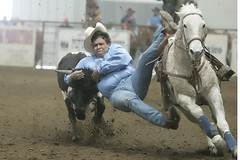 steerwrestling2 (Khushroo Ghadiali) Tags: horse topv111 wow top bull v rodeo 111 steer top20sports mireasrealm judgementday59