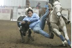 steerwrestling2 (Khushroo Ghadiali) Tags: horse topv111 wow top bull v rodeo 111 steer top20sports mireasrealm judgementday59
