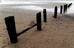 The Groins of Youghal (Donncha Ó Caoimh) Tags: ireland sea beach water sand cork irishblogs youghal groins rishblogs