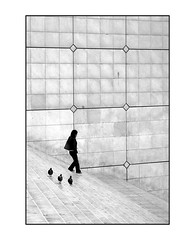 pigeons and woman (elfis gallery) Tags: street people blackandwhite bw white black paris france nature monochrome animal fauna publicspace french grey perfect outdoor 5 streetphotography ladefense schwarzweiss weiss schwarz myfavs animalic lagrandearche favorits inpublic scharzweiss graustufen 10favs schwarzundweiss bilderfantasien decicivemoment peopleoutdoor todolist1