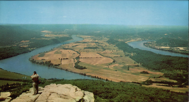 Moccasin Bend - 1950's Post Card