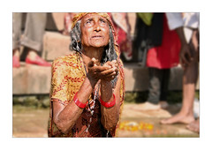 Offering Water - BENARES (Elishams) Tags: city woman india indian traditional faith prayer religion culture holy elder devotion varanasi ritual dailylife indianarchive hinduism puja ganga ganges rituals banaras benares ghat uttarpradesh  50millionmissing