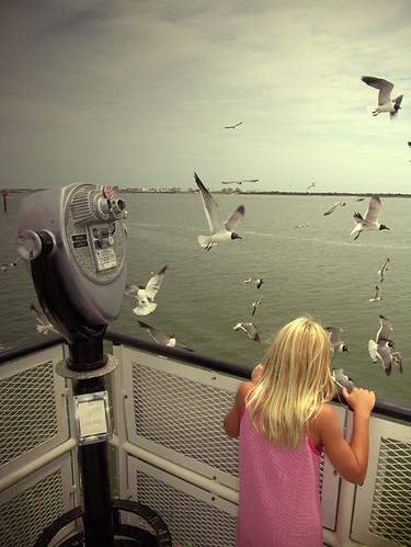Girl-&-Gulls
