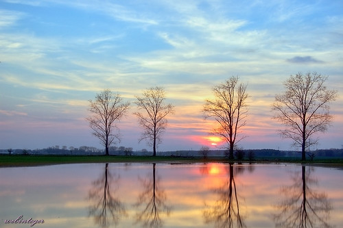 Фото, красивые картинки