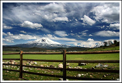 Mount Shasta, Northern California (ladder_711) Tags: blue sky brown white mountain green fence spring butte magic surreal shasta polarizer mountshasta mtshasta