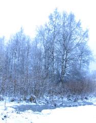 huhtikuu1-2006 066b (Fantasyfan.) Tags: blue trees winter snow ice topv111 tag3 taggedout finland spring tag2 tag1 womenonly birch oulu alppila fantasyfanin