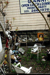 Finalist: Creepiest Front Yard in Chicago (pantagrapher) Tags: chicago animals yard stuffed furry gbrearview creepy chicagoguessed chicagoist