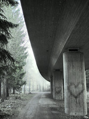 Urban Lovetrees (Sameli) Tags: road above wood city morning bridge trees light shadow urban mist abstract cold tree green leave love nature leaves rain weather misty fog loving composition forest train wow suomi finland hearts grey lig