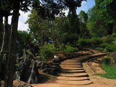 Thailand Forest Stairs Doi Ang Khang (hn.) Tags: park copyright stairs thailand asia asien heiconeumeyer seasia soasien southeastasia sdostasien stair treppe chiangmai asie treppen northernthailand copyrighted chiangmaiprovince angkhang doiangkhang treppenstufen royalproject doiangkhangroyalproject nordthailand bankhumdhoiangkhangarea